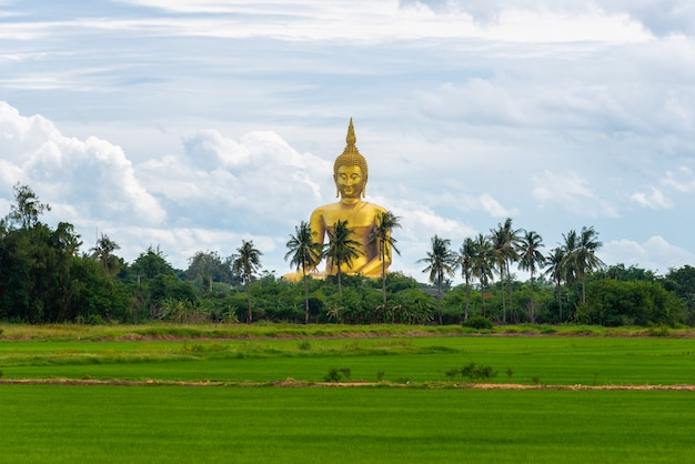 Groot gouden boeddhabeeld bij boeddhistische tempel
