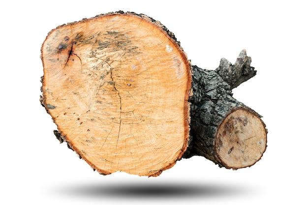 Groot hout geïsoleerd op wit