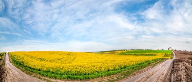 Groot panoramisch uitzicht met onverharde weg door velden van koolzaad in bloei