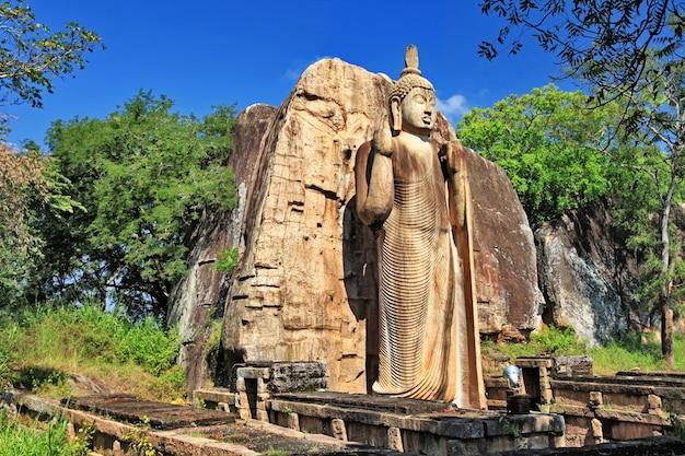Groot standbeeld van boeddha - awukana, sri lanka oriëntatiepunten en reizen