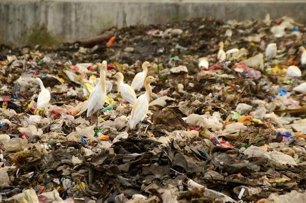 Groot vuilnis land. land- en luchtverontreiniging.