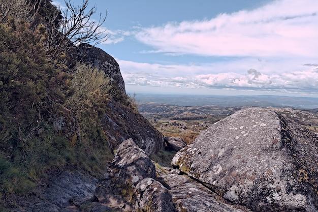 Groothoek opname van een bergveld vol rotsen en twijgen