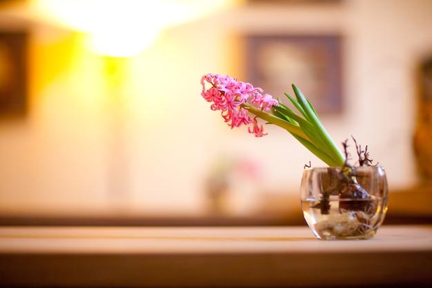 Groothoek opname van een groene tak met roze bloemen in een kom met water