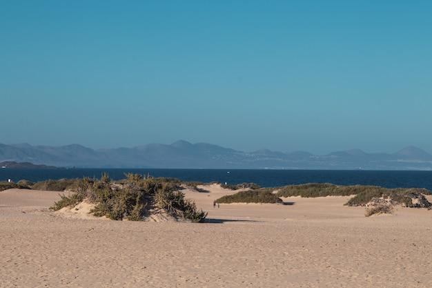Groothoek opname van een zanderige kustlijn met rustig water