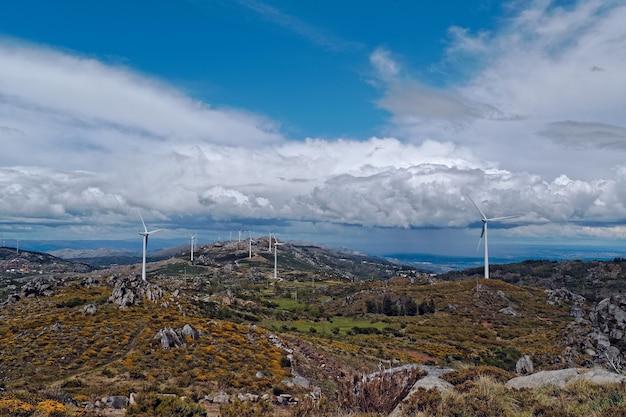 Groothoek opname van witte windventilatoren op een groot grasland
