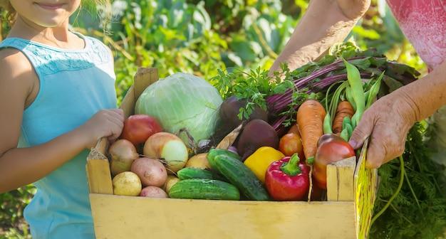 Grootmoeder en kind met groenten in de moestuin. Premium Foto