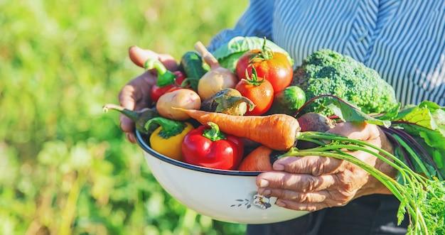 Grootmoeder in de tuin met groenten in hun handen.