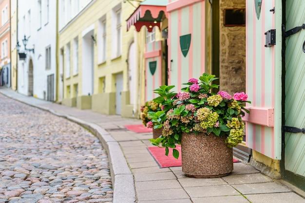 Grote bloempot met bloemen op de geplaveide stoep van de middeleeuwse stad.