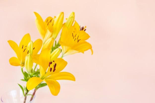 Grote gele bloemenlelies op lichte muur.