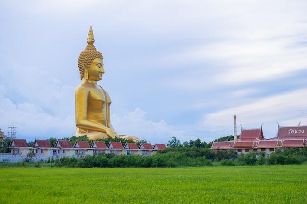 Grote gouden boeddha met rijk veld, wat muang angthong populaire boeddhistische heiligdom in thailand.