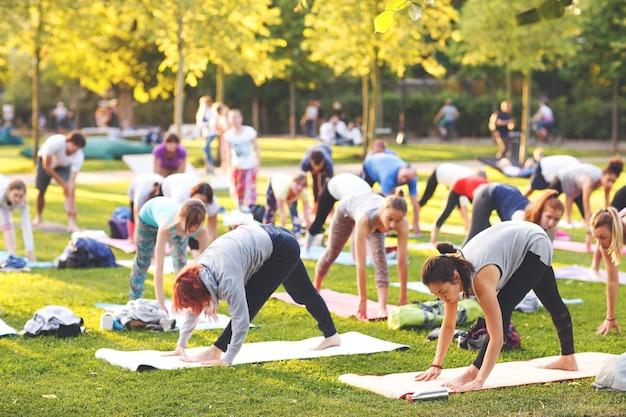 Grote groep volwassenen die een yogales buiten in het park bijwonen