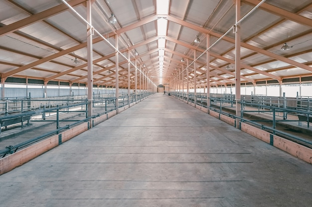 Grote hangar. lege ruime grote kamer, hangar.