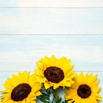 Grote heldere zonnebloemen op lichtblauwe oppervlakte