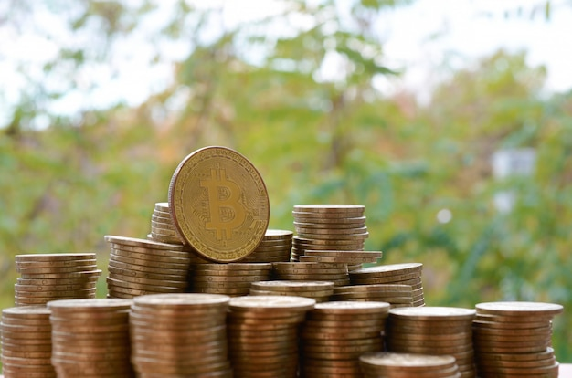 Grote hoeveelheid bitcoin stapels op de achtergrond wazig groene bomen. cryptocurrency-handelsconcept