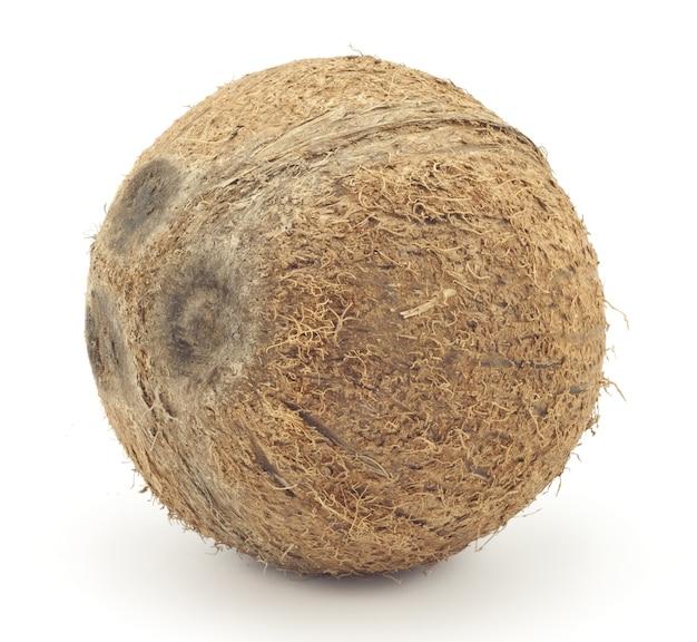 Grote kokosnoot geïsoleerd