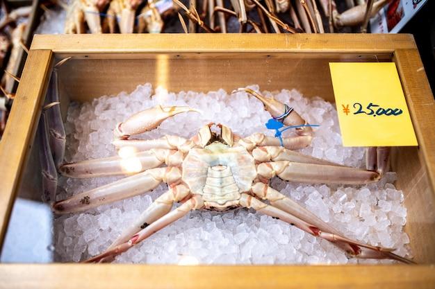 Grote krabben in japan, die een zeer dure verkoopprijs hebben.