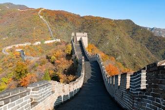 Grote Foto Op Muur.Grote Muur Vectoren Foto S En Psd Bestanden Gratis Download