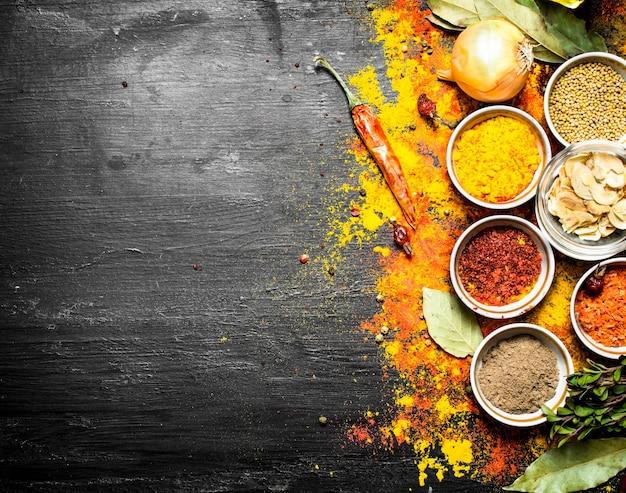 Grote reeks van indiase kruiden en specerijen