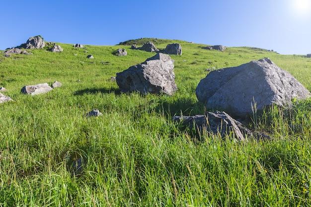 Grote rotsachtige stenen op de helling van groene heuvel