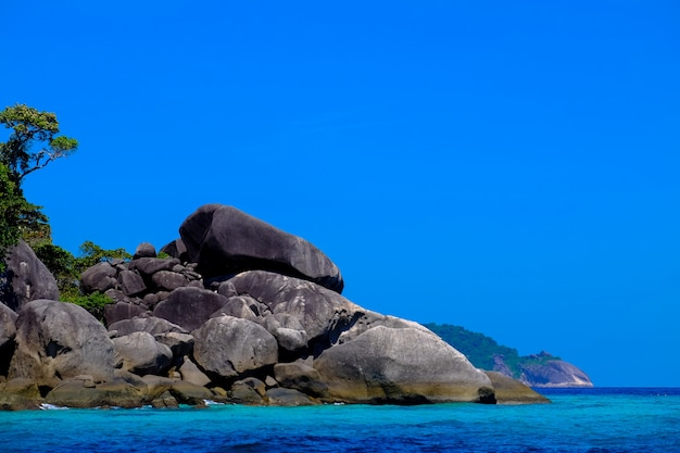 Grote rotsen en bomen in de buurt van de zee met heldere hemel