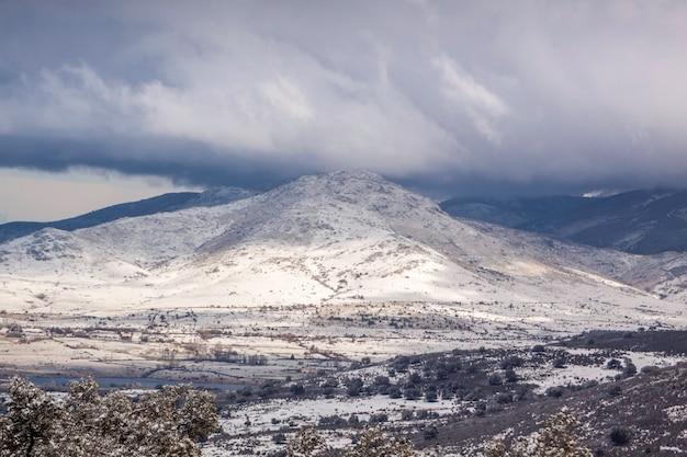 Grote sneeuwval in het dennenbos van revenga, in het nationale park sierra de guadarrama, in segovia en madrid. castilla y leon, spanje