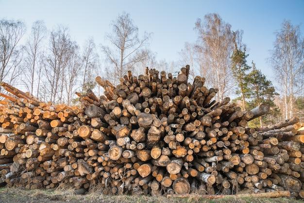 Grote stapel houtblokken