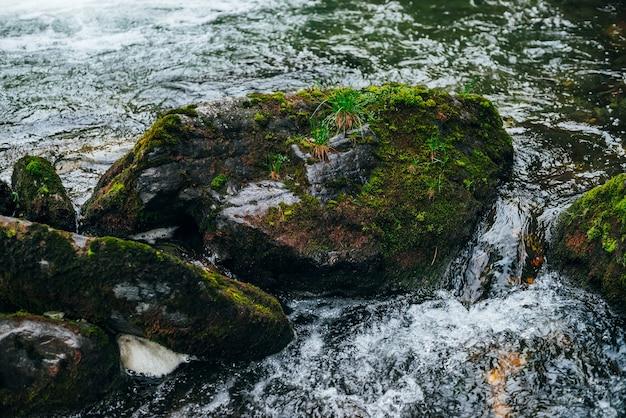Grote stenen met mos en korstmos in watergeweer van bergrivier