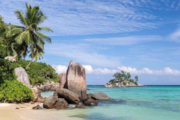 Grote stenen op het strand met veel groene planten