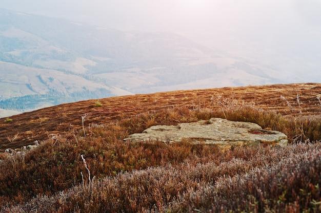 Grote vlakke plaatsteen op bergheuvel.
