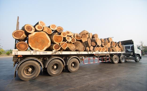 Grote vrachtwagen die hout vervoert