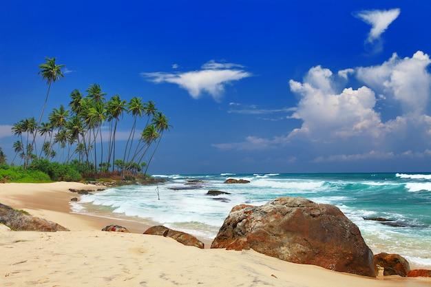 Grote vrede van sri lanka. weligama in het zuiden van het eiland