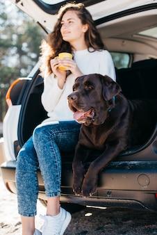 Grote zwarte hond in de auto