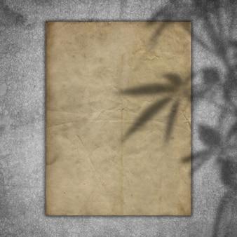 Grungedocument op een concrete textuur met een bekleding van de plantenschaduw