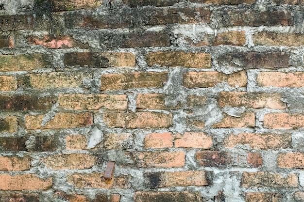 Grungy steenbaksteenstok in de muur