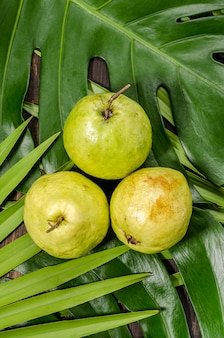 Guave op de achtergrond van groene palmbladen.