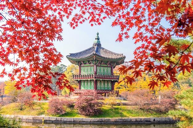 Gyeongbukgung en esdoorn in de herfst in korea.