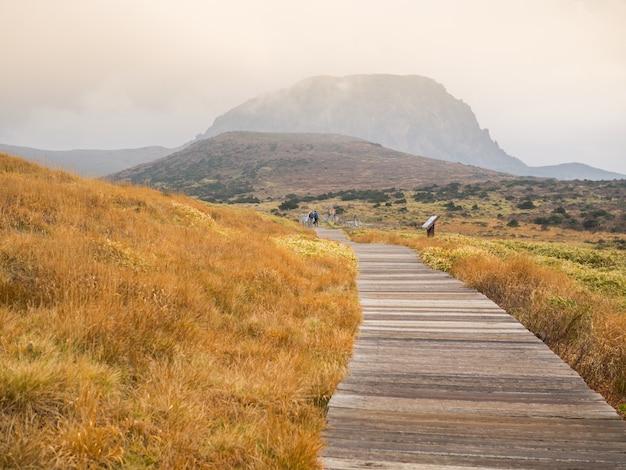 Hallasan-berg nationaal park bij eiland jeju