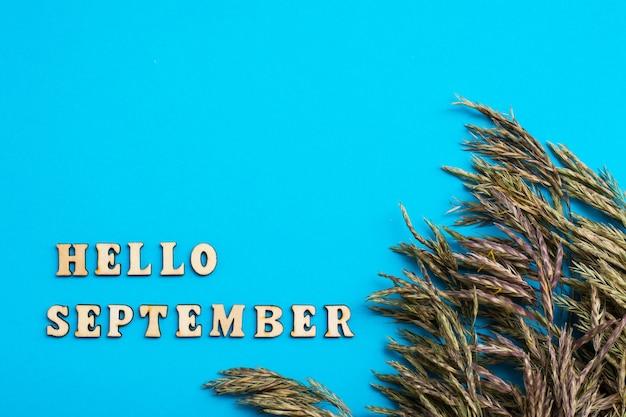 Hallo september-tekst in houten letters en oren van gras geïsoleerd