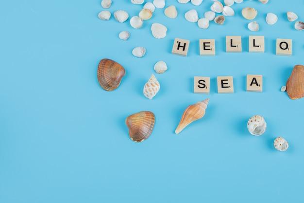 Hallo zee-citaat op blauw oppervlak met rond zeeschelpen