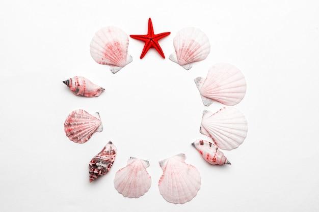 Hallo zomer tekst op witte achtergrond met levende koraal kleur schelpen, rode zeester. hallo zomer reizen vakantie concept, plat lag poster achtergrond.