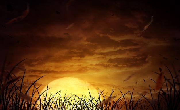 Halloween-achtergrond een breed veld met de maan op een enge nacht