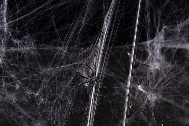 Halloween, decoratie en horror concept
