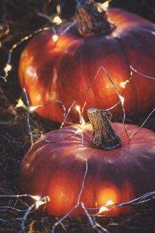 Halloween-feestnachtachtergrond met oranje pompoenen en lichten, verticaal schot