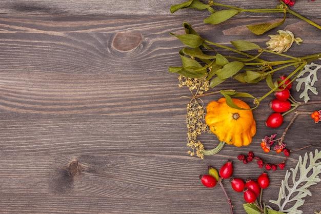 Halloween herfst concept. pompoen, maretak, vlierbes, papaver, hop, hondenroos, schisandra