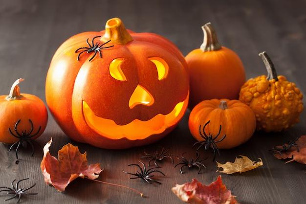 Halloween jack o lantern pompoenspinnen bladeren