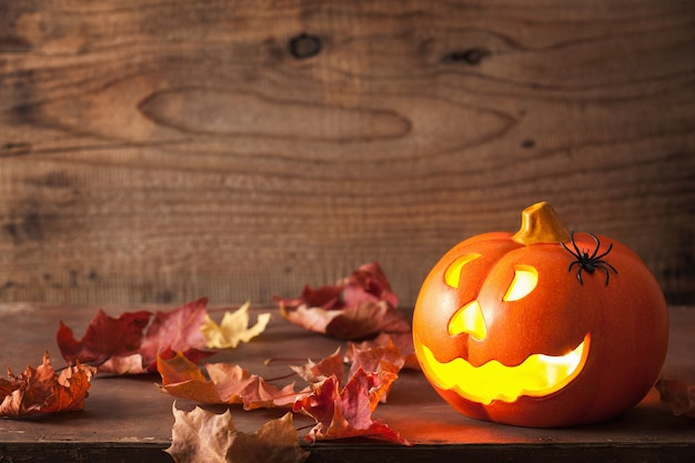 Halloween jack o lantern pompoenspinnen