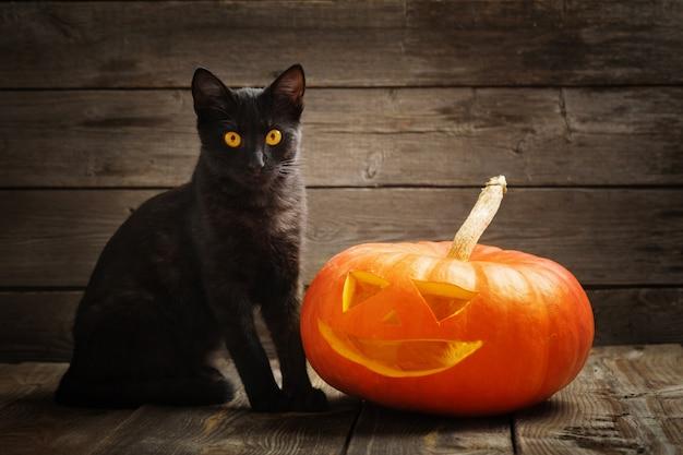 Halloween-pompoen en zwarte kat op houten achtergrond