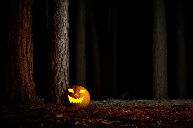 Halloween pompoen in een bos 's nachts