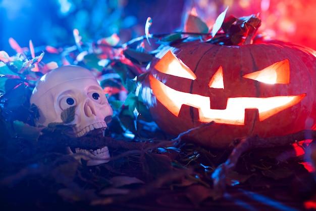 Halloween-pompoen in een mystiek bos bij nacht.