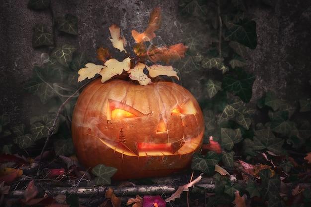 Halloween-pompoen in openlucht met binnen kaars en klimopbladeren